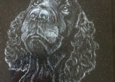 A Etching of a family dog on Black Granite